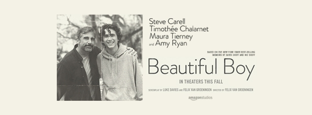 BeautifulBoyBanner